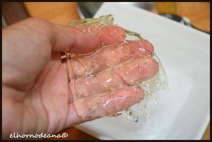 Textura de la gelatina
